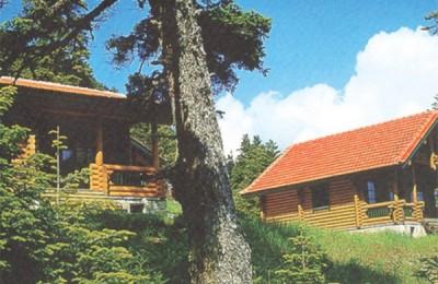Elatos Resort & Health Club organized new holidays' programs for the summer season.