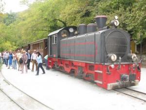 MIlies_train_IMG_4127