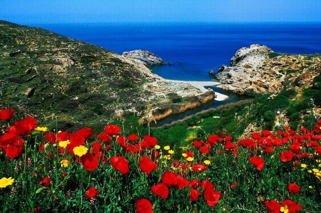 Nas, Ikaria. Photo © Facebook - ΟΙ ΟΜΟΡΦΙΕΣ ΤΗΣ ΕΛΛΑΔΑΣ ΜΑΣ