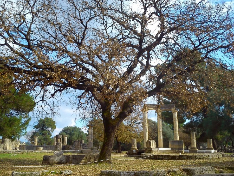 Archaeological Site of Olympia. Photo © Constantinos Dougas