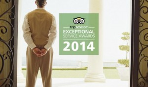 Tripadvidor_Exceptional Service_1