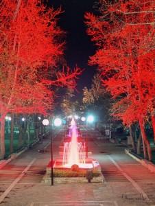 Larissa's Alcazar park.
