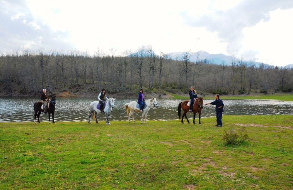 Horseback riding excursion.