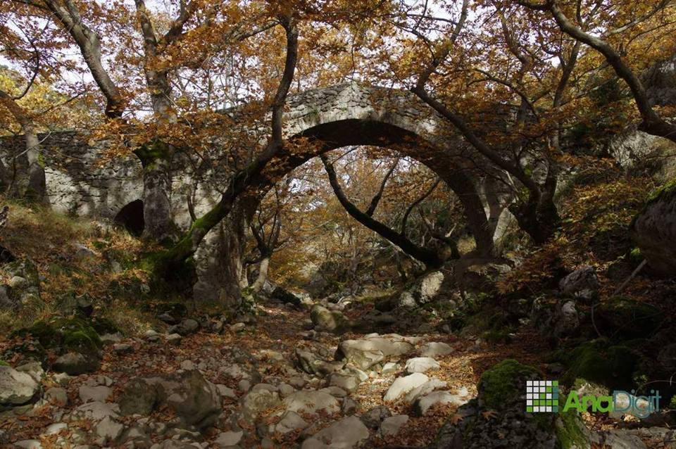 Menalon_Trail_cover