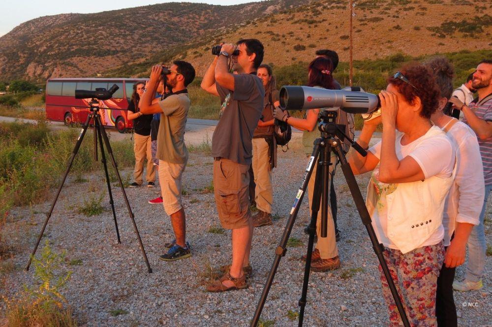 Hmerida Oikotourismou_Birdwatching_2_ NCC