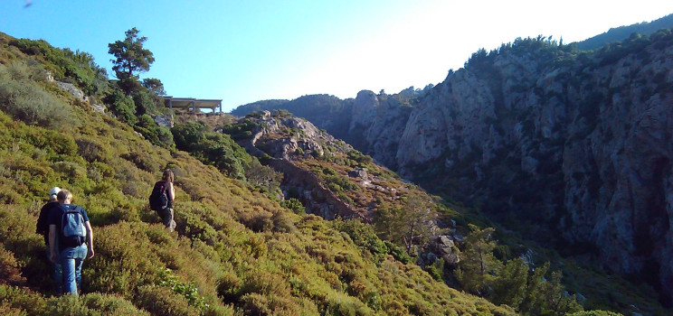 Ikaria_project-pathway-744x350