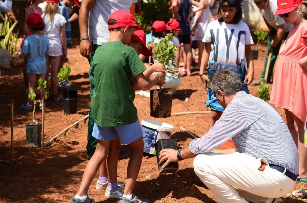 creta_maris_Kids Planting