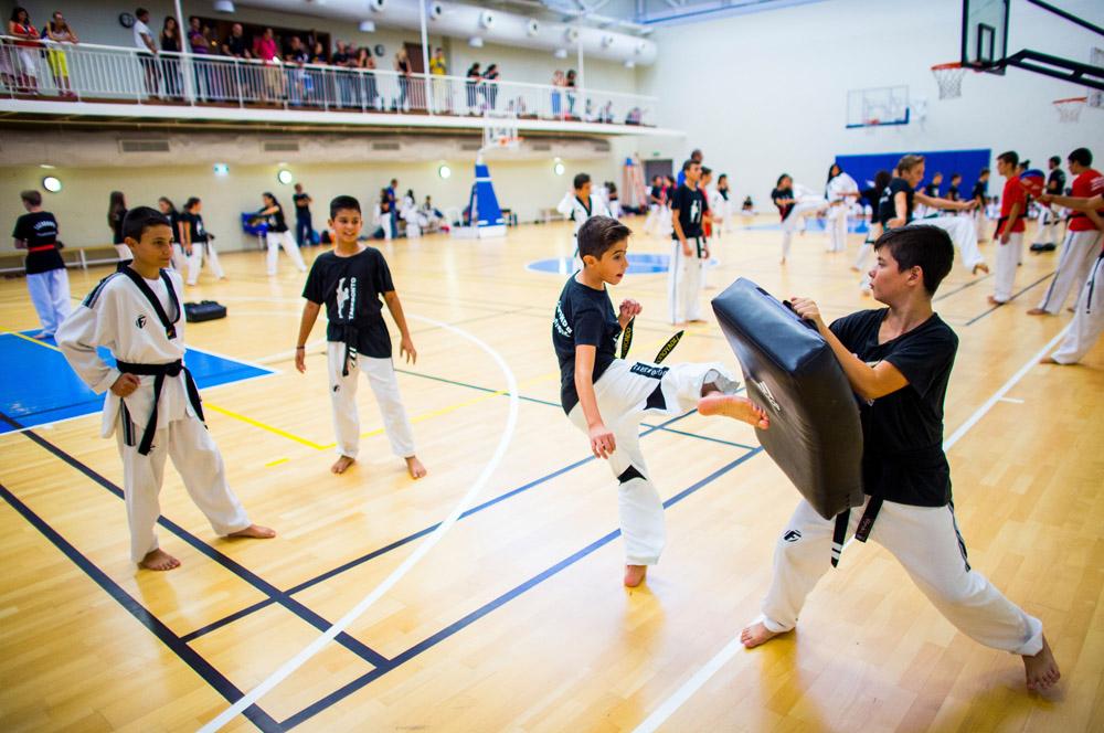 Taekwondo at the Navarino Challenge. Photo credit: Vladimir Rys