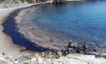 Salamina, Photo Source: WWF Hellas / Giorgos Lialios