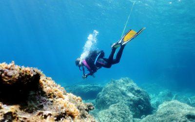 Photo Source: World Adventure Dive (Florine)