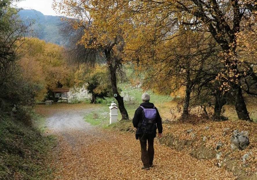Photo Source: @The Menalon Trail (anadigit)