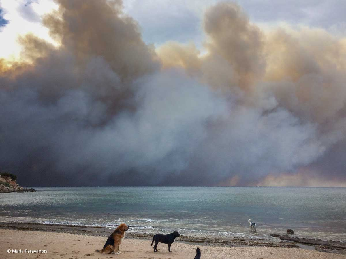 Thick smoke looms over Marikes Beach in Rafina, 26km west of Athens, as wildfires fanned by gale force winds ravaged the coastal resort towns of northeastern Attica.