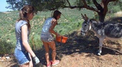 Photo source: Hellenic Agritourism Federation