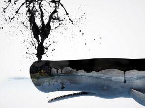 Photo Source: WWF Hellas