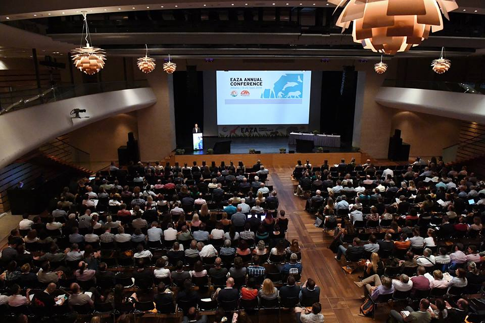 Photo source: Hellenic Association of Professional Congress Organizers (HAPCO)