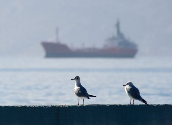 Photo source: Elefsina Port Authority