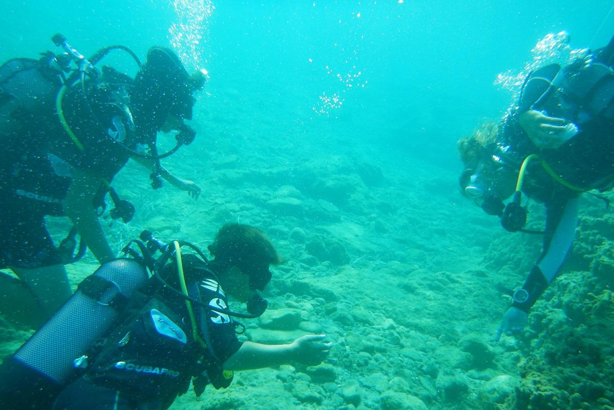 divers sea