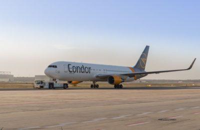 Photo source: Condor