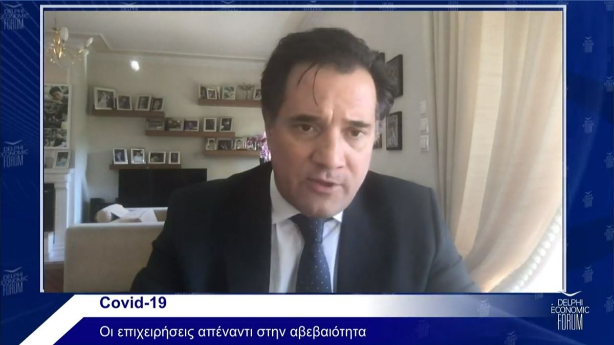 "Greek Minister of Development and Investment, Adonis Georgiadis, during the Delphi Economic Forum's online discussion ""Covid-19: Businesses against the uncertainty""."