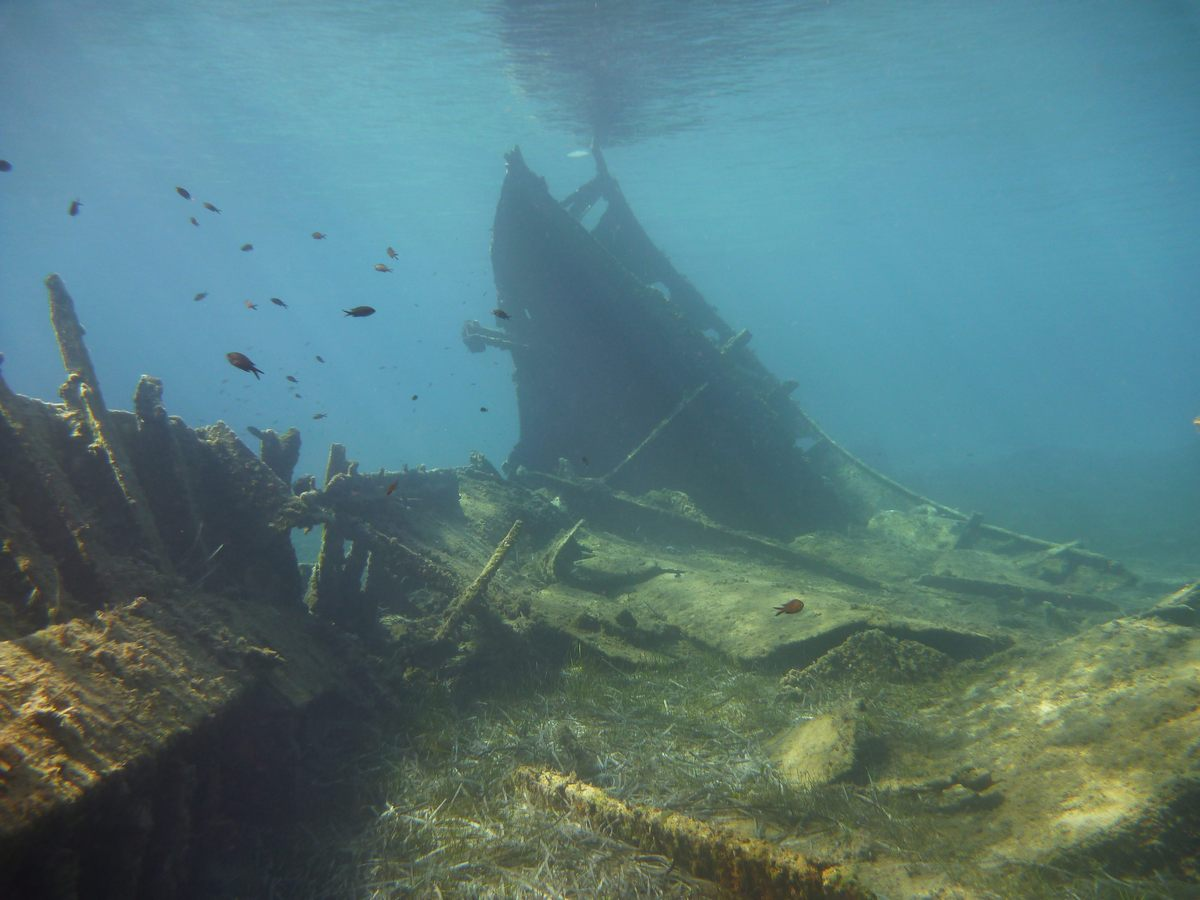 An unknown merchant ship which sank in 1942 in the waters of the Proti islet, off Messinia in the Peloponnese. Photo source: Culture Ministry