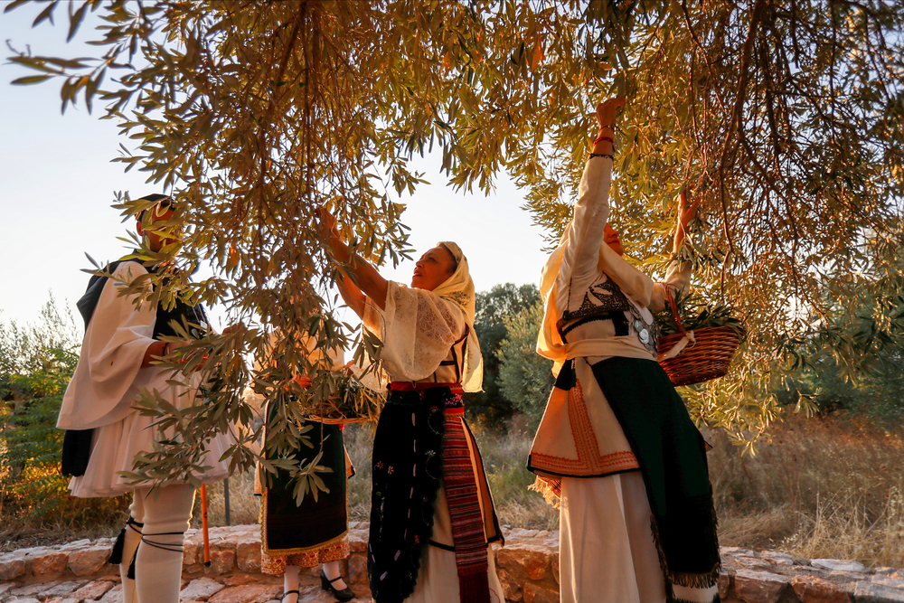 From last year's symbolic event at Mavroelia from Artemision, which is also know as Olive Mavromandila (photo by Angelos Zymaras @ Αυθεντικός Μαραθώνιος Κολύμβησης)