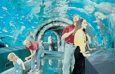The new, innovative aquarium on Crete may not look as in the above photo but it does promise to impress.